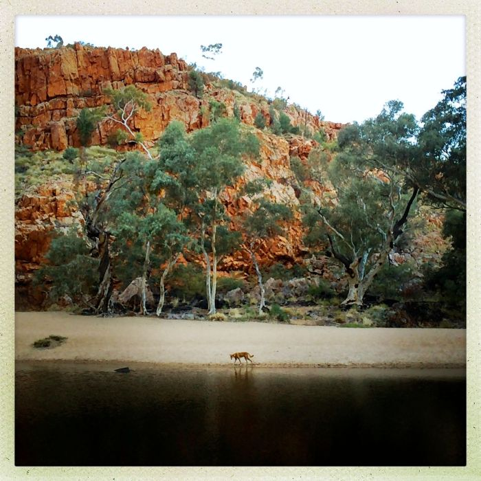 Red Centre_030